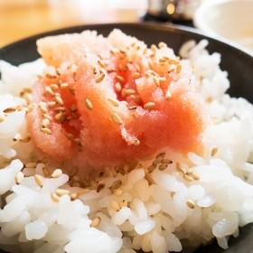 日本明太子醬/魚卵(三角袋) 500g±5%/包