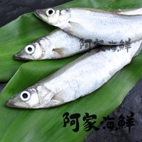 鮮凍柳葉魚X 2盒(300g±5%/盒)