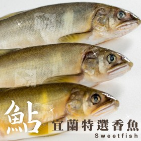公香魚(10尾) 1kg±10%/盒