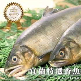宜蘭帶卵母香魚(5尾) 1kg±10%/盒