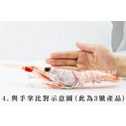 【紐西蘭角蝦/生食級 】特價2盒免運(三款尺寸)