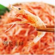正 東港櫻花蝦